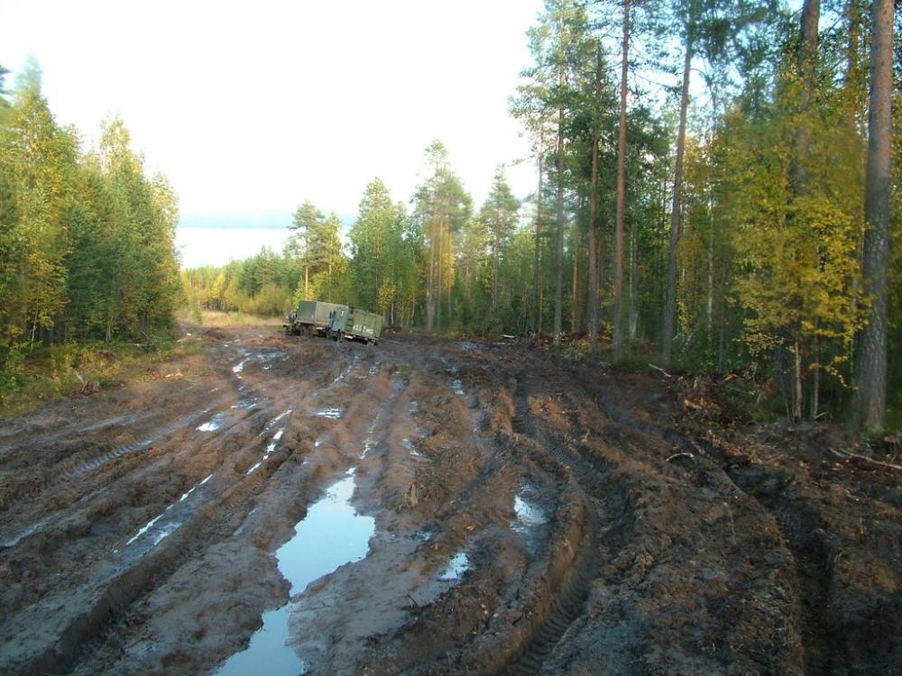 Депутаты требуют введения уголовной ответственности за плохие дороги